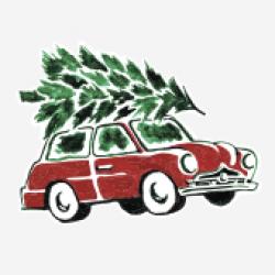 Afhentning af juletræ, kun i postnr 1000-4000-20