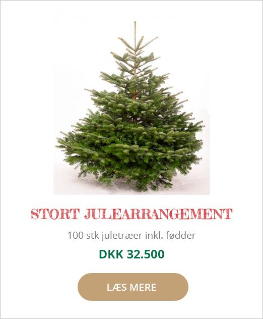 Juletræ stort julearrangement